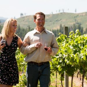 Ultimate Reasons Why You Should Try Going For A Wine Tour - Read Here!