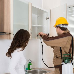 How Hiring a Pest Control Company is a smart solution